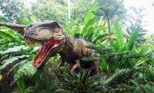 Размер имеет значение: змеи пережили динозавров после падения метеорита