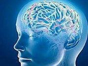 Зависть вызвана неполадками мозга