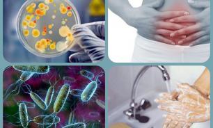 Дизентерия. Факторы риска, диагностика, лечение