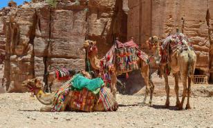 Туризм на Ближнем востоке потеряет из-за COVID-19 не менее $30,6 млрд