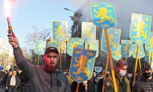 Политолог о марше националистов: они огорчают Европу