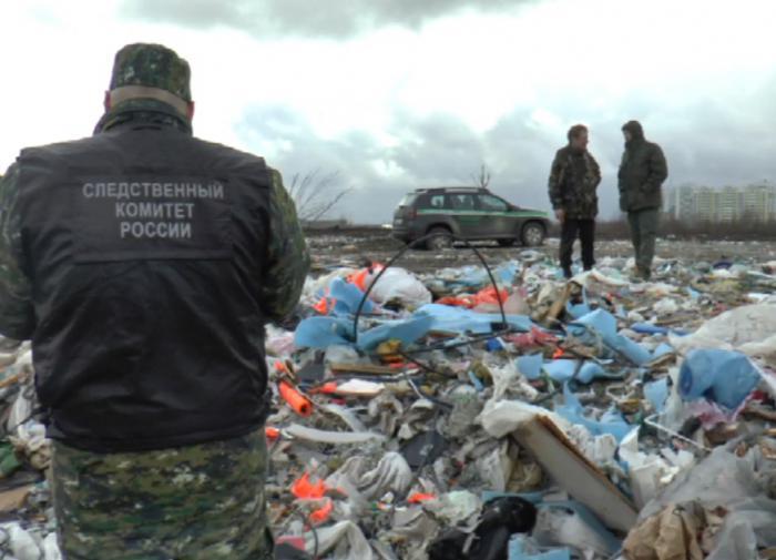 На экологию в РФ потратят 1 триллион рублей