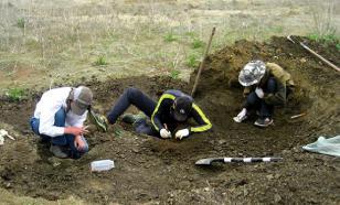 Поисковики под Курском подняли более 130 останков советских солдат