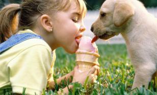 Как домашнее животное влияет на психику ребенка