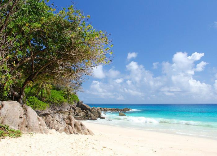 Сейшельские острова открылись для туристов с прививкой от COVID-19