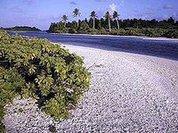 Россия оплатила Кирибати признание Абхазии?