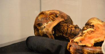 """Археологи нашли на Кубани останки """"людей-великанов"""""""