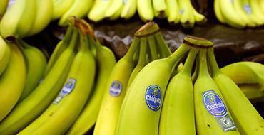 Бананы и мед снизят риск рака и улучшат пищеварение - ученые