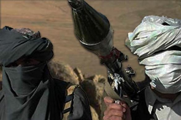 Жительница Кубани объявлена в розыск за терроризм