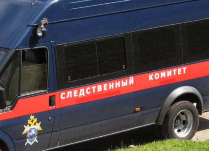 На Алтае пропавшая школьница угодила в подвал к 40-летнему мужчине