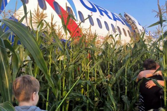 Пассажирка севшего на поле А321 пожаловалась на травлю в интернете