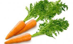 Омолаживающая морковь. О лечебных свойствах полезного продукта