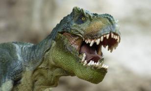 Палеонтологи объяснили, что привело к вымиранию динозавров