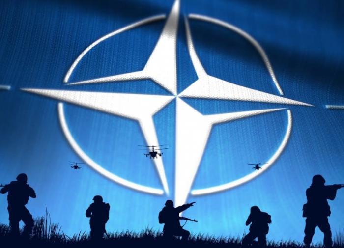 Французы захотели выйти из НАТО и сблизиться с Россией