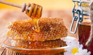 Полезное сладкое: интересные факты о мёде