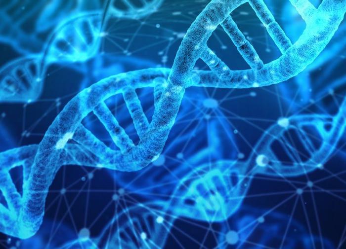 Чудеса генетики: даунов смогут избавить от лишней хромосомы
