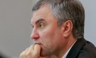 Володин предупредил о возможности завоза COVID-19 из-за рубежа