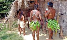 Как аборигены Австралии опередили Колумба