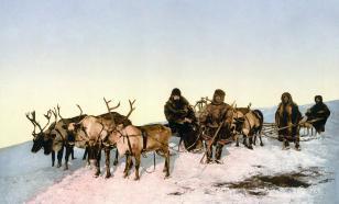 Эксперт рассказал о перспективах развития туризма в Арктическом регионе
