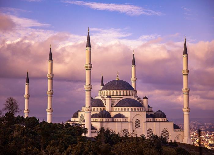 С 15 апреля Россия приостановит авиасообщение с Турцией и Танзанией