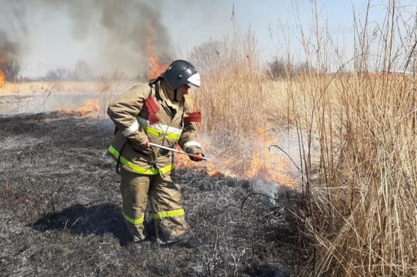 В Хабаровском крае пожарные задержали поджигателя травы