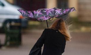 Сильный ветер оставил без электричества жителей Ярославской области