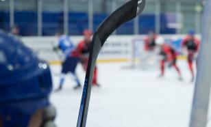 Изобразил очистку банана: за расистский жест хоккеиста дисквалифицировали
