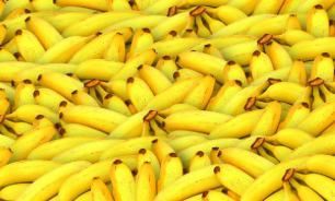 Стало известно, почему бананы полезно есть ежедневно