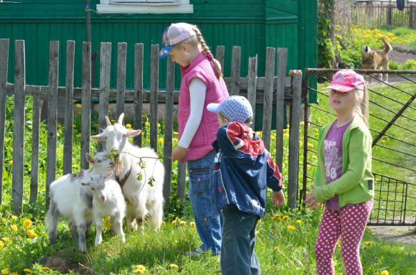 Эксперт рассказал о перспективах развития агротуризма в России