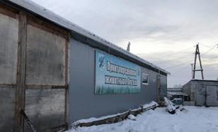 В Якутске проверяют пункт передержки, где усыпили две сотни животных
