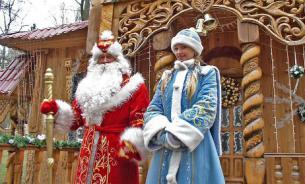 Новогодние приключения русских в России