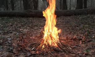 В России появился штраф за разведение костров в лесах