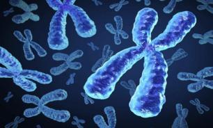 Мужчины с синдромом Клайнфельтера имеют дополнительную Х-хромосому от матери или отца