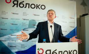"""Девять кандидатов от """"Яблока"""" сняли с выборов в Госдуму из-за активов за рубежом"""