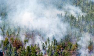На территории России зафиксировано 57 лесных пожаров