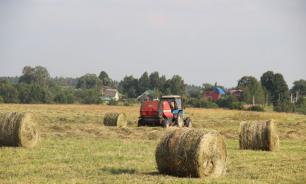 Минсельхоз планирует изымать у предпринимателей неиспользуемые земли