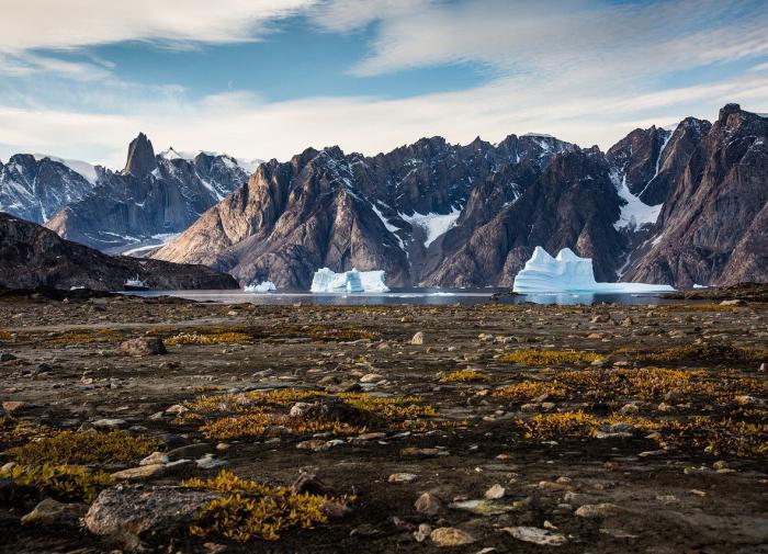 Арктика может снова стать зелёной