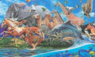 Отец Алексей Плужников: животные будут в раю
