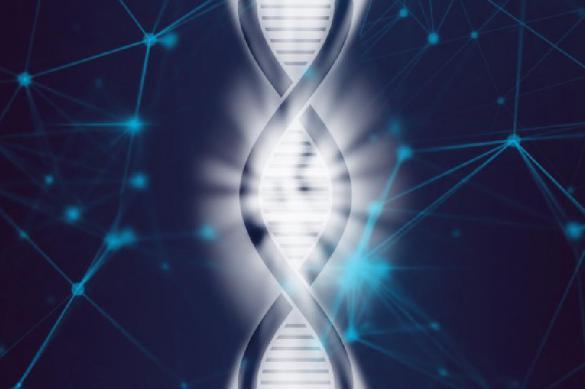 Эпигенетика: человек - большая флешка