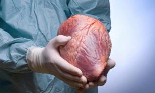 Эпигенетик: органы у всех людей одинаковы, но работают по-разному