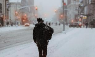 Метеорологи спрогнозировали метель в Москве