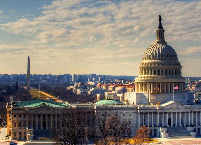 В Вашингтоне проголосовали за декриминализацию галлюциногенных грибов