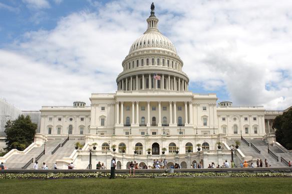 Сенаторы США призвали ввести санкции против Чайки и Коновалова