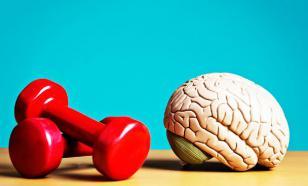 Физкультура как средство улучшения мозговой активности