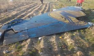 В Совфеде прокомментировали заявление Ирана о сбитом самолете