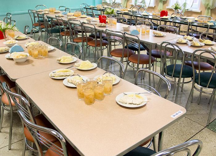 Чиновники Красноармейска сделали школьные столовые закрытыми от прессы