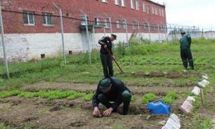 Спикер Совфеда предложила привлекать заключенных для выполнения госзаказов