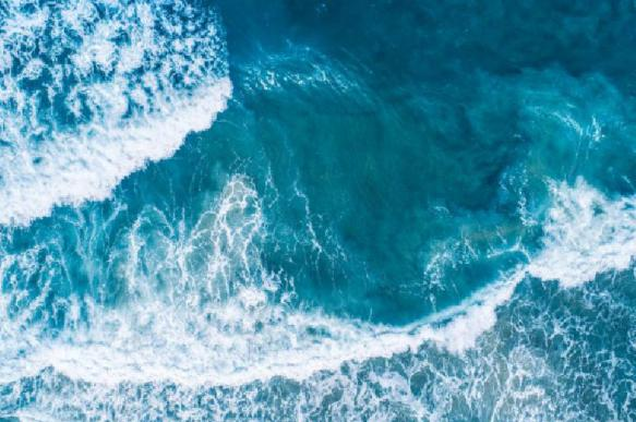 Доктор бионаук Адрианов: на дне океана скрыто лекарство от рака