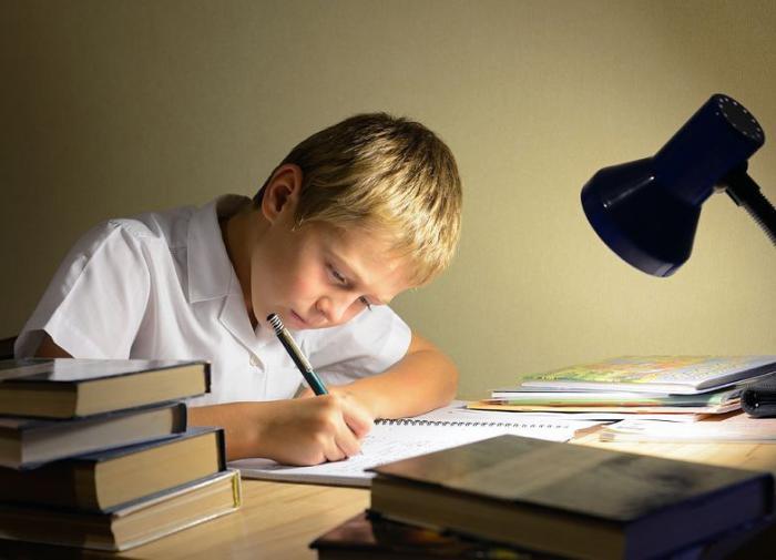 Всё больше детей готовится к взрослой жизни ещё со школы