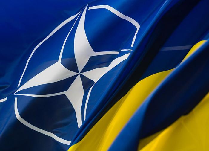 """Украинский генерал о НАТО: """"Мы должны чётко понять, какой посыл нам дали"""""""